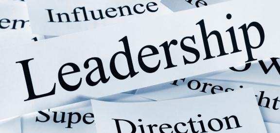 Estrutura Organizacional, Liderança e Gestão de Pessoas